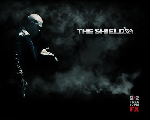 shields7-eldobja