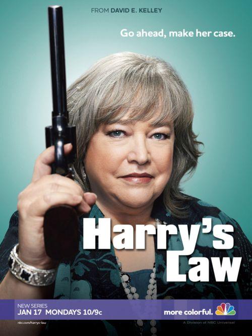 Harrys Law poster