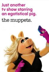 The Muppets-poster-04-kis