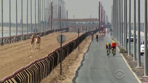 The Amazing Race - 28x08-19