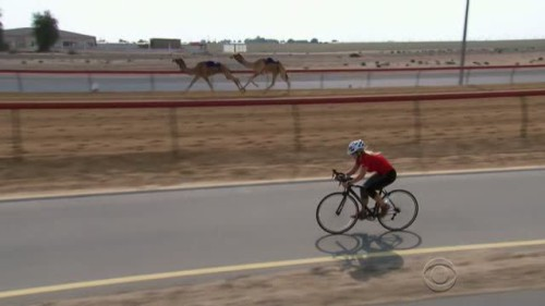 The Amazing Race - 28x08-23