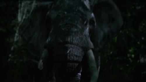 Zoo - 2x01-08