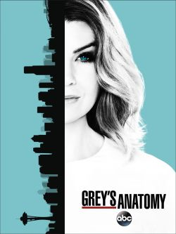 greys_anatomy_season-13-poster-kis